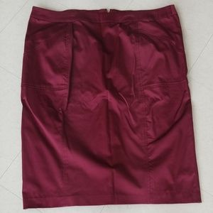 Plus Size Ashley Stewart Skirt (16)